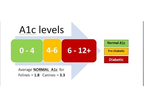 کیت HbA1c -HBA1C و روش آنزیمی - HBA1C و دیابت ملیتوس - HBA1C و روش ایمونوفلورسانس - HBA1C و روش ایمونوتوربیدیمتری - HBA1C و روش HPLC