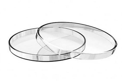 انواع پتری دیش شیشه ای | خرید پتری دیش شیشه ای | قیمت پتری دیش شیشه ای